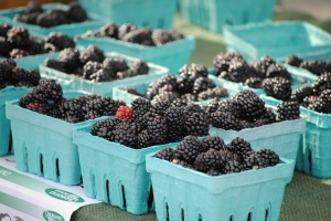 farmers' market 13